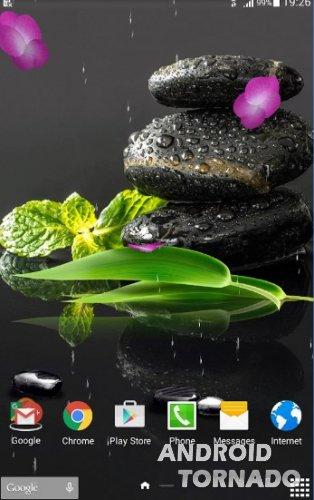 Живые обои сад камней